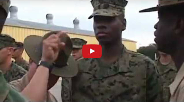 The Marine Corps or the SEALs?